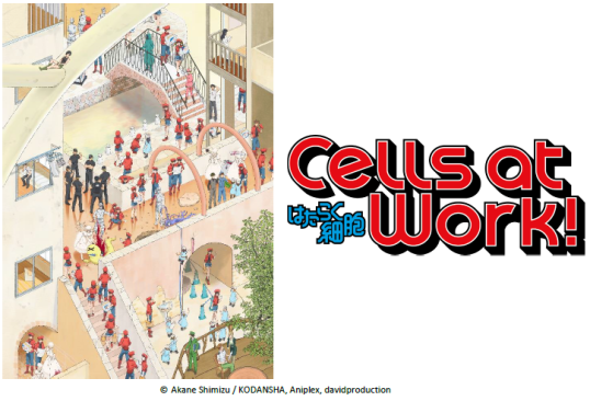 Anime Summer 2018 Blog Post Cells at Work